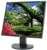 "LG 19"" L1953S-BF ( Black, 170H/170V, 300cd/m*2, 2000:1(DFC), 5ms, TCO'03 )"